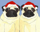 (HA24) -  Holiday 2 Fawn Pugs