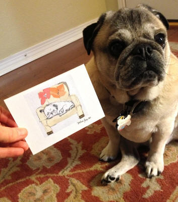Howie loves his new note cards to send out to his adoring fans! (Pug Design Bw20)