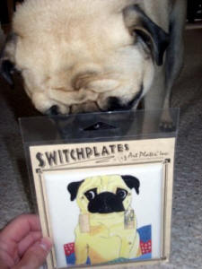Salinger loves his new switcplate!