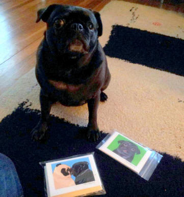 Scarlet loves her new note cards ~ pug designs A85 & A86