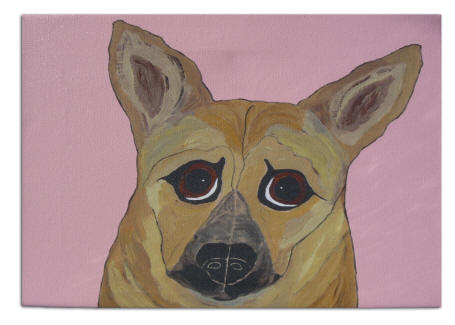 Canvas Transfer - Dutch Shepherd